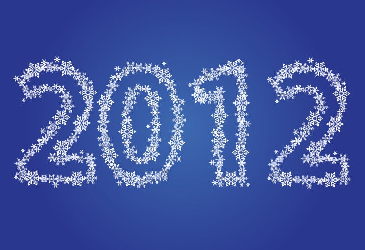 2012 In Snowflakes