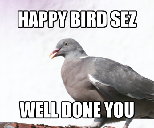 Happy Bird sez well done you