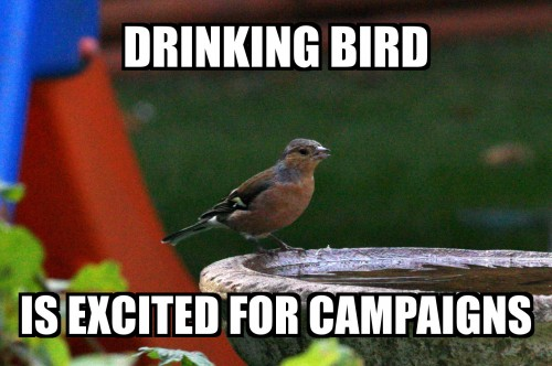 Drinking Bird Loves Campaigns