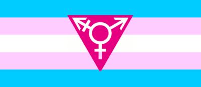 Transgender flag-triangle