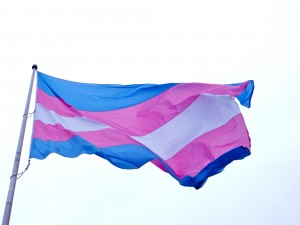 trangender_flag_photo