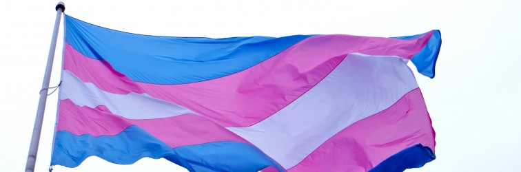 Newsletter 2015-02-02: Transgender Rights and Things of Note